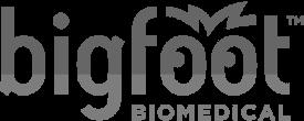 Bigfoot Biomedical